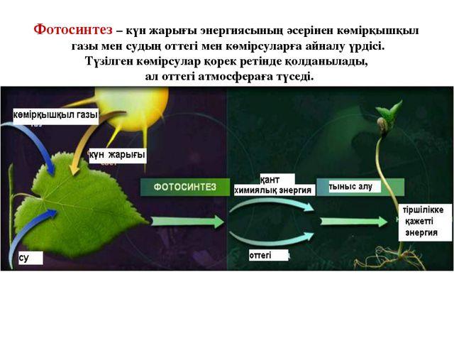 Фотосинтез – күн жарығы энергиясының әсерінен көмірқышқыл газы мен судың отте...