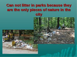 Can not litter in parks because they are the only pieces of nature in the city