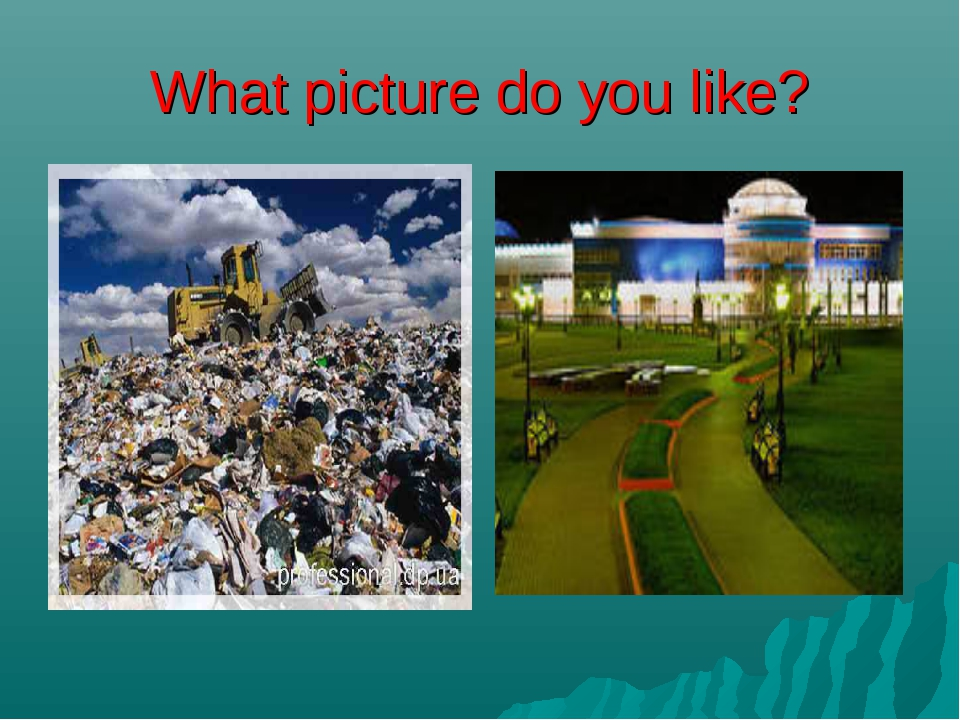What picture do you like?
