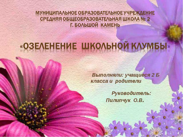 Выполняли: учащиеся 2 Б класса и родители Руководитель: Пилипчук О.В.