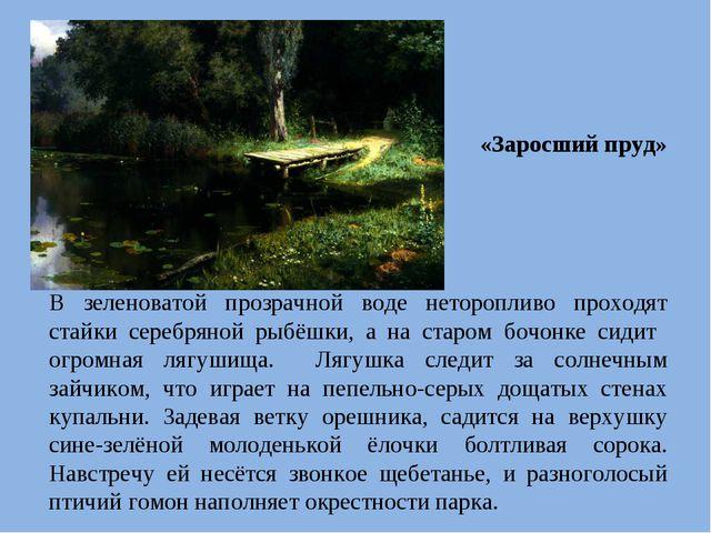 «Заросший пруд» В зеленоватой прозрачной воде неторопливо проходят стайки сер...