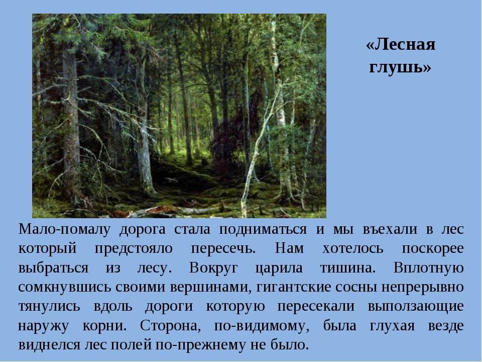 «Лесная глушь» Мало-помалу дорога стала подниматься и мы въехали в лес которы...