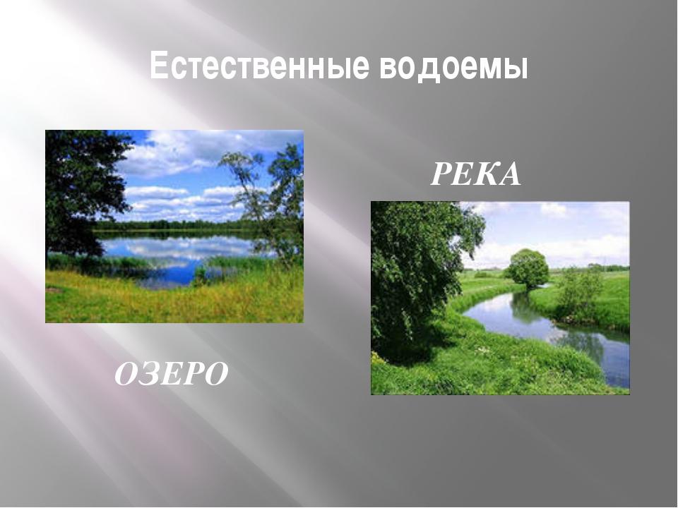 Естественные водоемы ОЗЕРО РЕКА