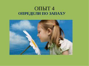 ОПЫТ 4 ОПРЕДЕЛИ ПО ЗАПАХУ