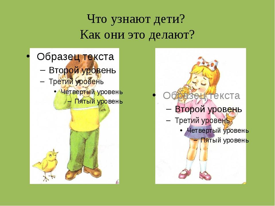 Что узнают дети? Как они это делают?