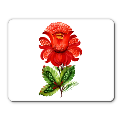 http://www.vsemayki.ru/catalog_img/137601/pad2/white_250.png