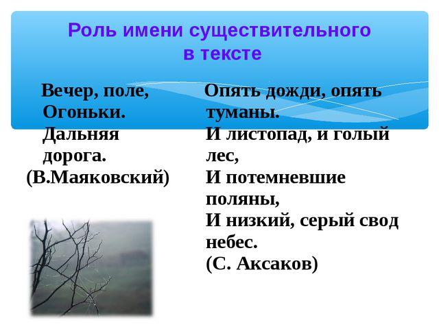 Роль имени существительного в тексте Вечер, поле, Огоньки. Дальняя дорога. (В...