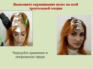 Выполните окрашивание волос на всей треугольной секции Чередуйте крашеные и н