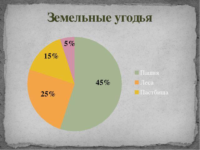 Земельные угодья 5% 15% 45% 25%