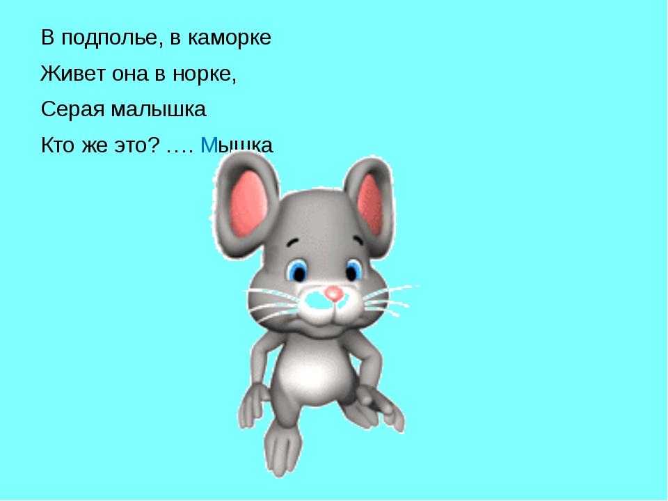 В подполье, в каморке Живет она в норке, Серая малышка Кто же это? …. Мышка