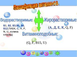 В1, В2, В3,В5, В6, В12,ПАБК, С, Н, Р, N, U, холина хлорид) (А, Д, Е, К, Q, F)