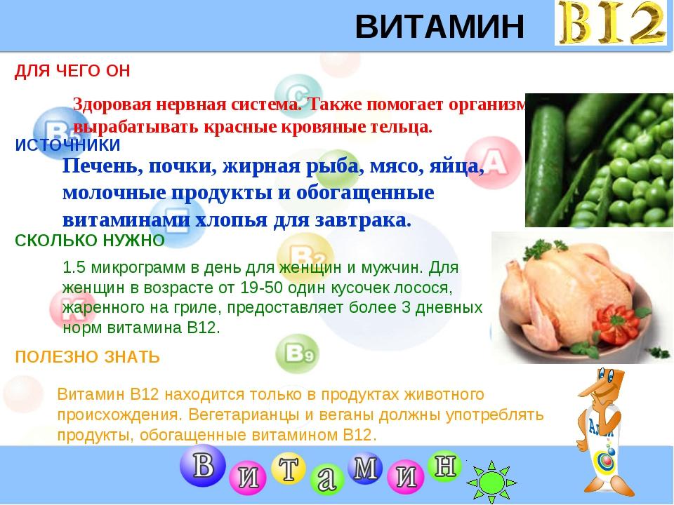 ВИТАМИН B12 ДЛЯ ЧЕГО ОН ИСТОЧНИКИ СКОЛЬКО НУЖНО ПОЛЕЗНО ЗНАТЬ Здоровая нервна...