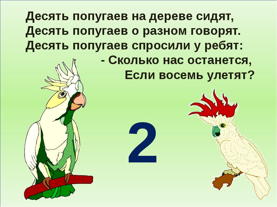 Десять попугаев на дереве сидят, Десять попугаев о разном говорят. Десять по...