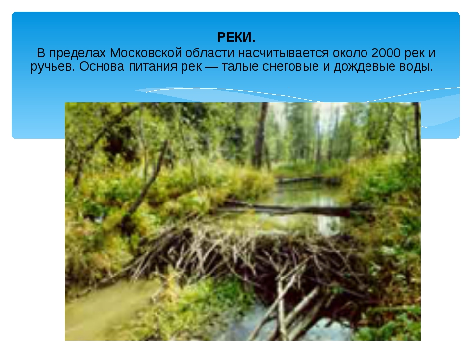 РЕКИ. В пределах Московской области насчитывается около 2000 рек и ручьев. Ос...