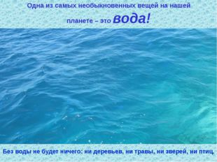 Одна из самых необыкновенных вещей на нашей планете – это вода! Без воды не б
