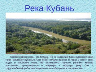 Самая главная река - это Кубань. По ее названию Краснодарский край тоже назы