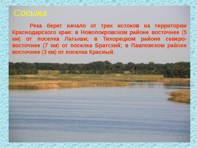 Сосыка Река берет начало от трех истоков на территории Краснодарского края: в...