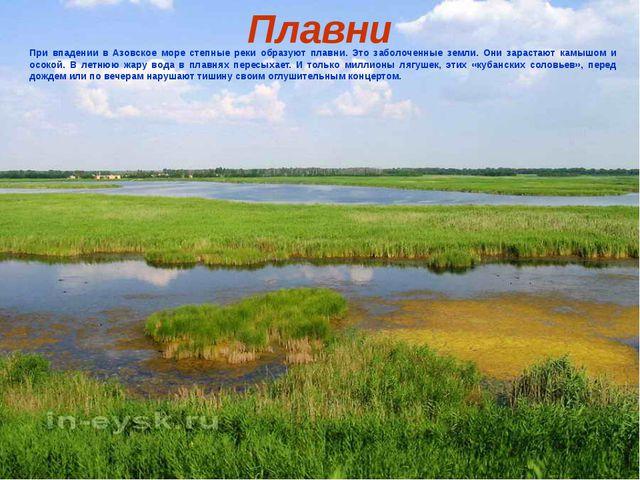 Плавни При впадении в Азовское море степные реки образуют плавни. Это заболоч...