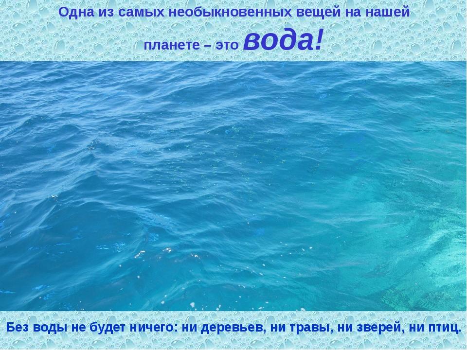 Одна из самых необыкновенных вещей на нашей планете – это вода! Без воды не б...