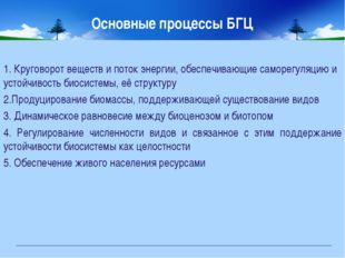 Основные процессы БГЦ 1. Круговорот веществ и поток энергии, обеспечивающие с