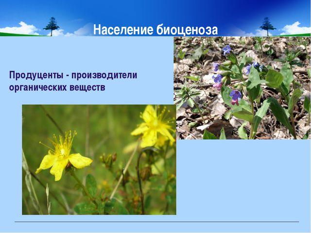 Население биоценоза Продуценты - производители органических веществ