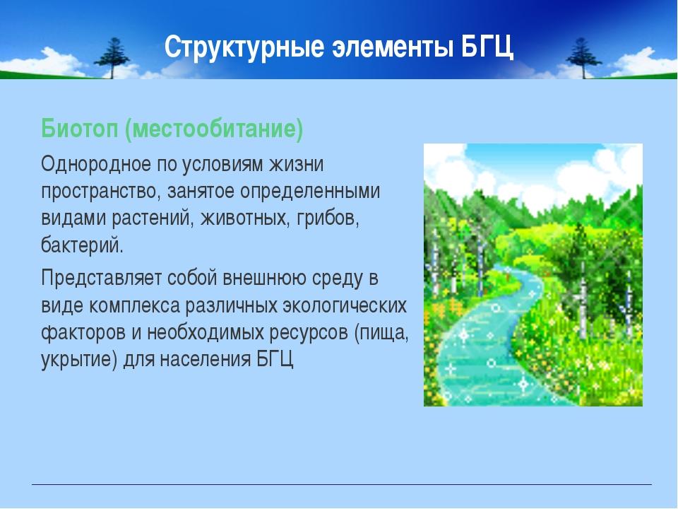 Структурные элементы БГЦ Биотоп (местообитание) Однородное по условиям жизни...