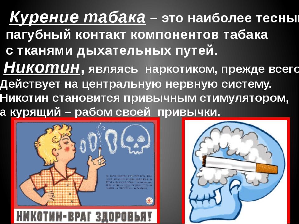 Курение табака – это наиболее тесный и пагубный контакт компонентов табака с...