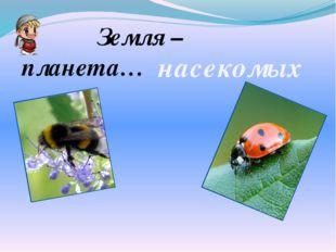 Земля – планета… насекомых