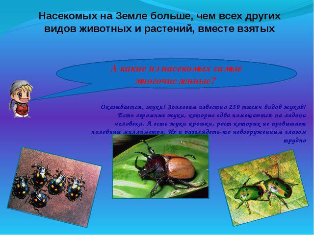 Насекомых на Земле больше, чем всех других видов животных и растений, вместе...