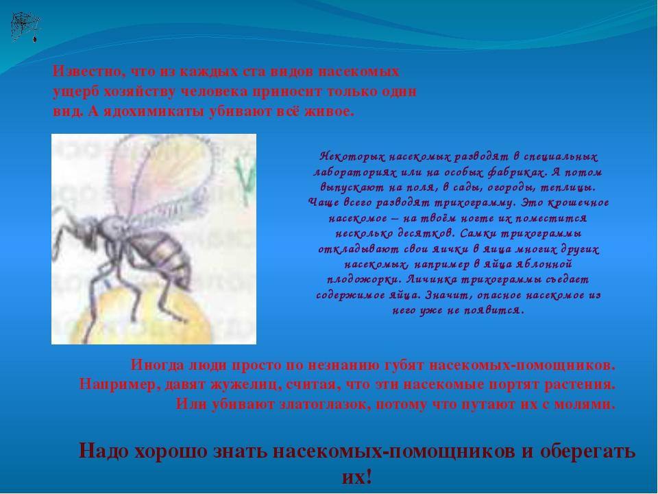 Известно, что из каждых ста видов насекомых ущерб хозяйству человека приносит...