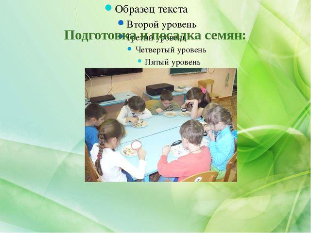 Подготовка и посадка семян: