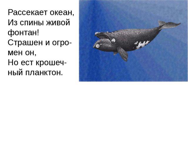 Рассекает океан, Из спины живой фонтан! Страшен и огро-мен он, Но ест крошеч-...