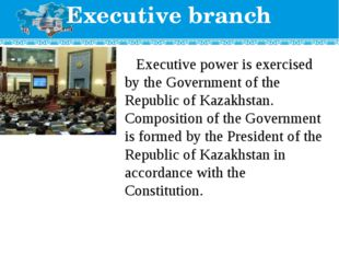 Executive branch Executive power is exercised by the Government of the Republ