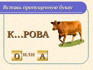 Вставь пропущенную букву  К…РОВА или О А