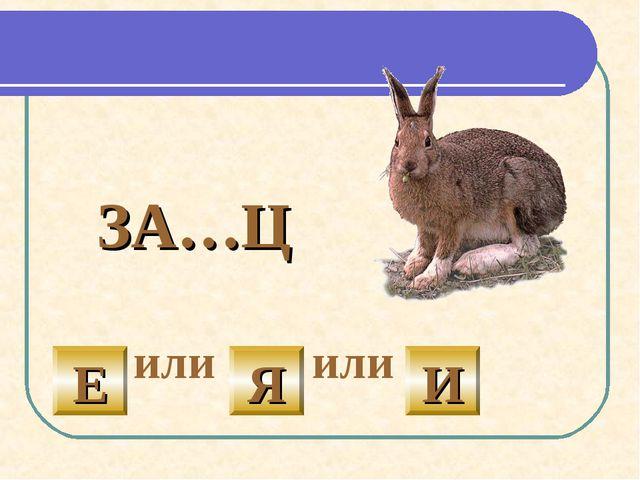 ЗА…Ц или или И Е Я
