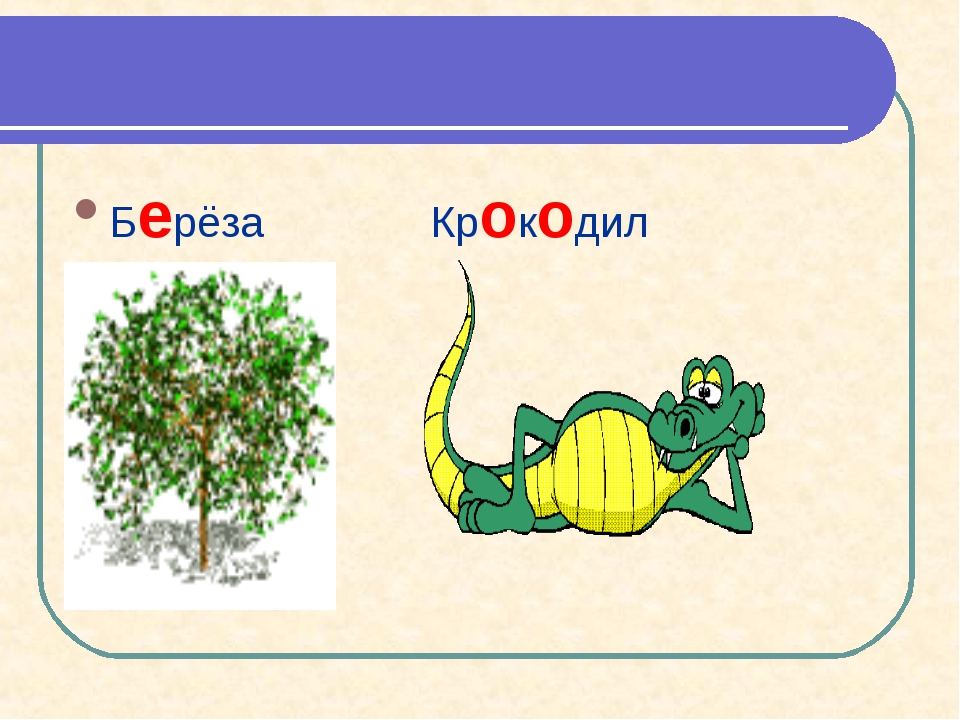 Берёза Крокодил