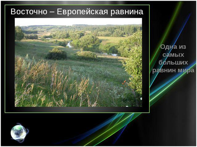 Восточно – Европейская равнина Одна из самых больших равнин мира