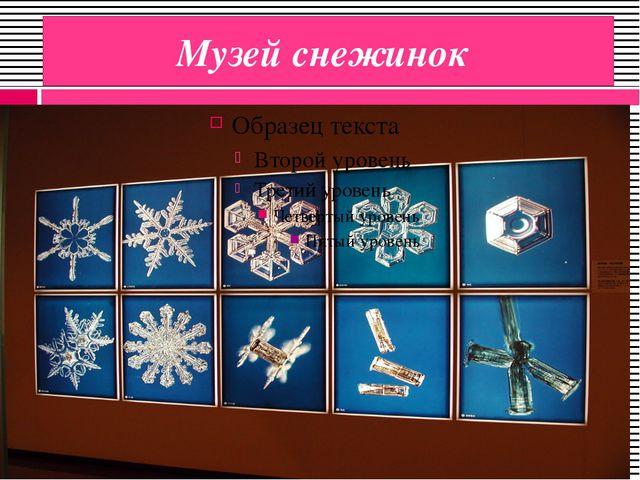 Музей снежинок