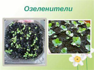 Озеленители