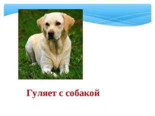 Гуляет с собакой
