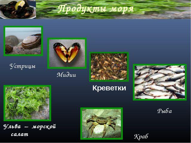 Продукты моря Ульва – морской салат Креветки Мидии Устрицы Краб Рыба