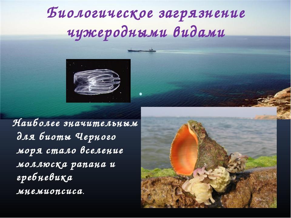 Биологическое загрязнение чужеродными видами . Наиболее значительным для биот...