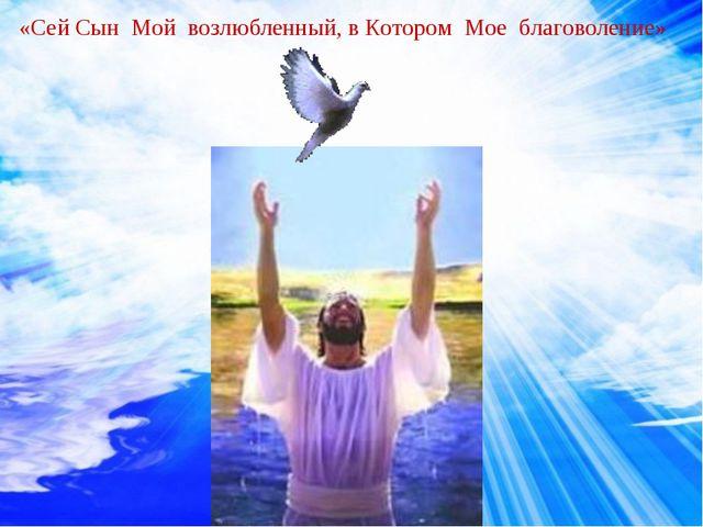 «Сей Сын Мой возлюбленный, в Котором Мое благоволение»