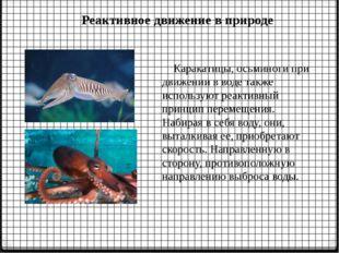 Реактивное движение в природе Каракатицы, осьминоги при движении в воде также