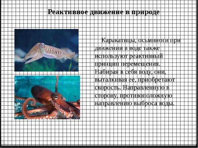 Реактивное движение в природе Каракатицы, осьминоги при движении в воде также...