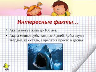 Интересные факты… Акулы могут жить до 100 лет. Акула меняет зубы каждые 8 дне