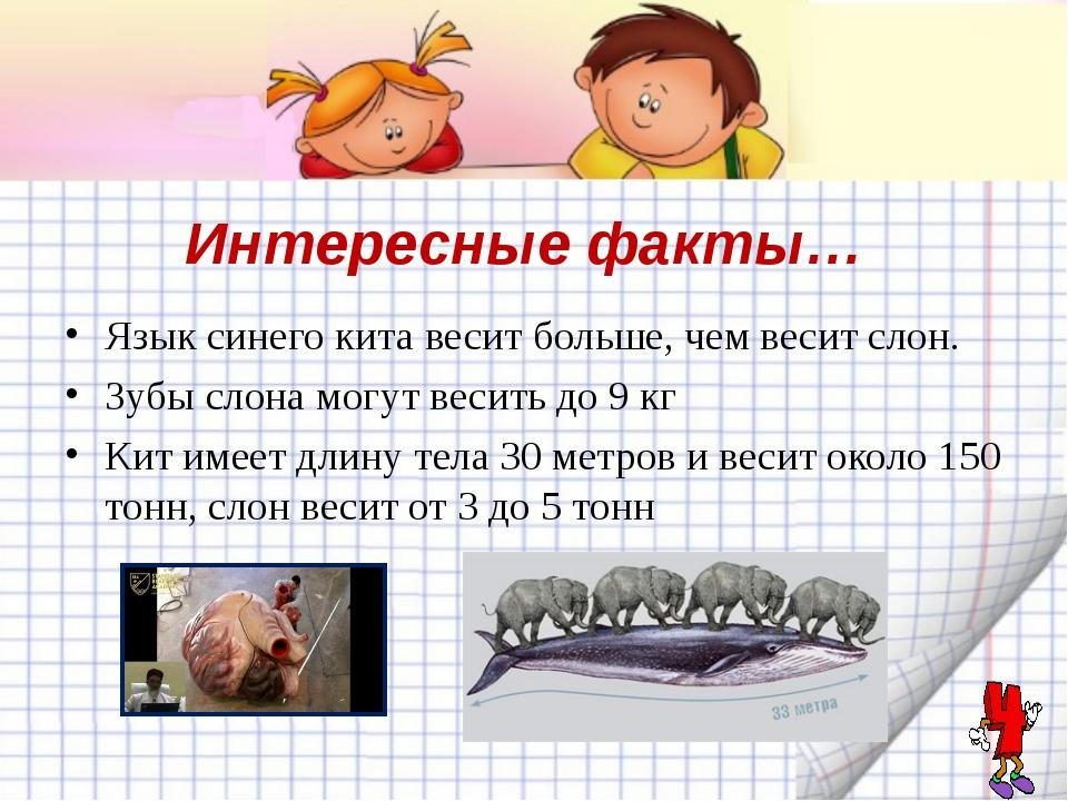 Интересные факты… Язык синего кита весит больше, чем весит слон. Зубы слона м...