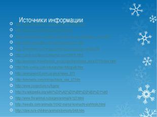Источники информации http://www.floranimal.ru/pages/animal/t/3688.html http:/