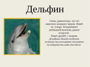 Дельфин Очень удивительно, что это животное называют зверем. Живёт он в море.