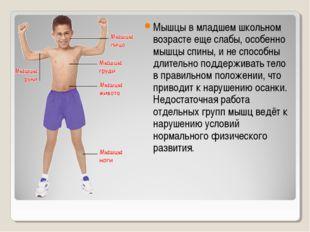 Мышцы в младшем школьном возрасте еще слабы, особенно мышцы спины, и не спосо